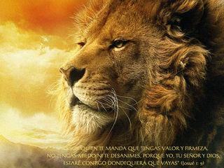 Aslan y versículo
