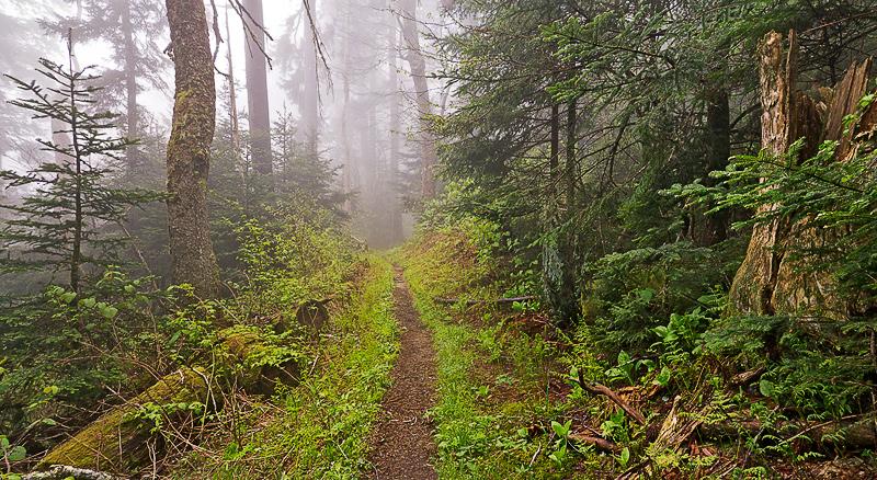 GSM-Trail