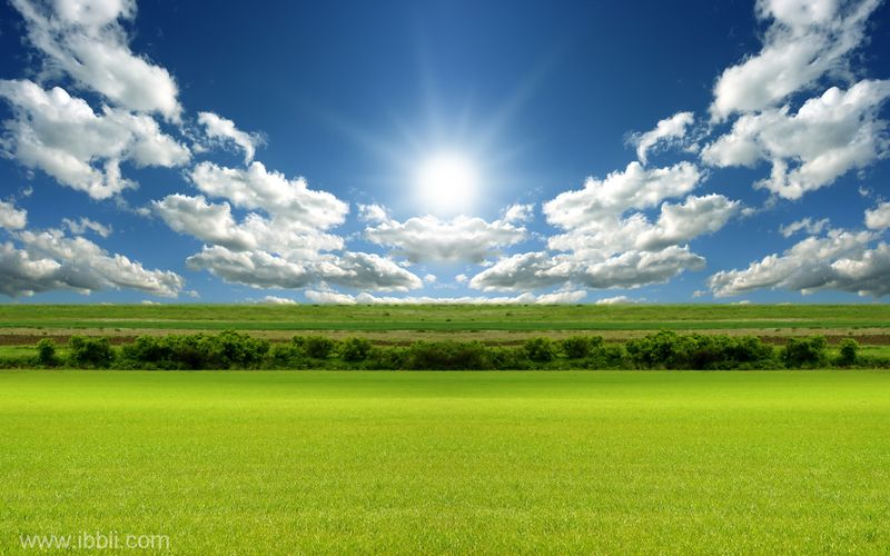 Sun-cloud-field