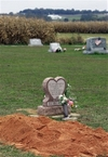 Grave_of_carl_roberts